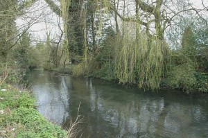 The Wye at Knaves Beech
